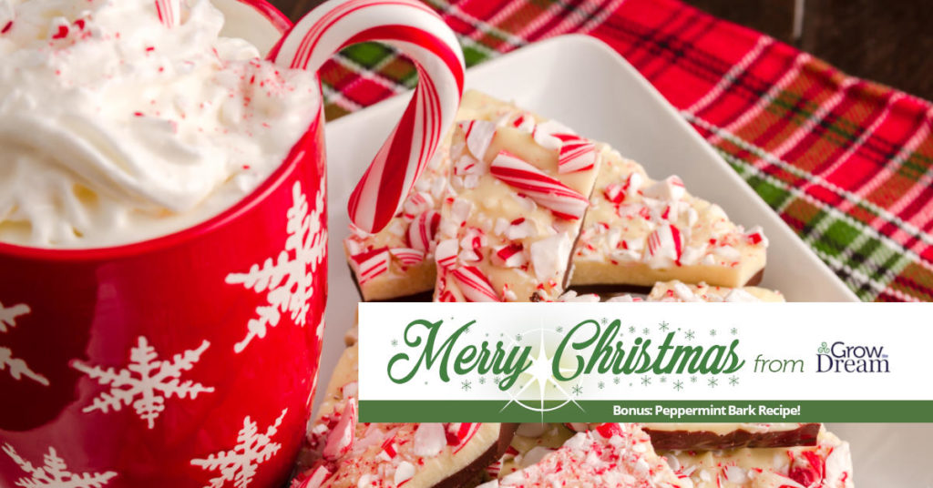 Merry Christmas from Grow The Dream